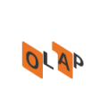 Northwest EIS-OLAP | Experts in Sales, Financial and Business Intelligence Consulting